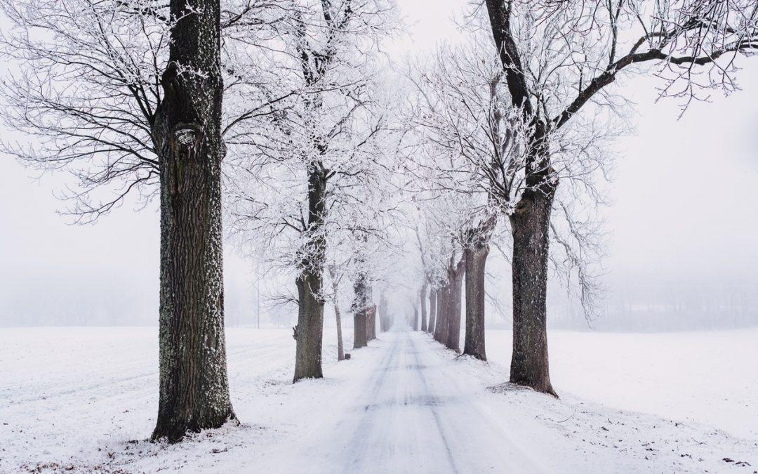 Wie sich eine Winterdepression verhindern oder lindern lässt